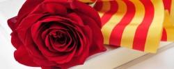 Imatge de S'obre el període d'inscripció per a participar a la Diada de Sant Jordi amb paradetes de roses i llibres 6