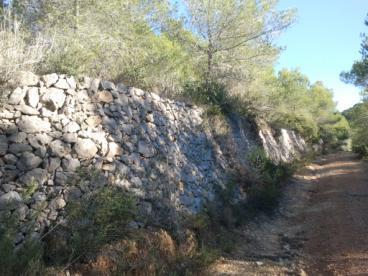 Imatge de El paisatge 22