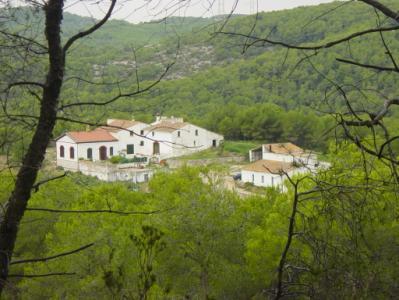 Imatge de El paisatge 24