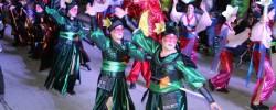Imatge de La Rua Carnaval d'Estiu de Cunit ha estat suspesa 12