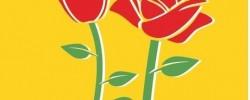 Imatge de Tots els actes culturals i tradicionals de Sant Jordi a Cunit 3