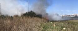 Imatge de Les condicions atmosfèriques obliguen a reforçar les mesures de prevenció d'incendis 11