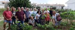 Imatge de Finalitza el curs d'horticultura ecològica amb molt bons resultats 3