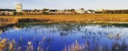 Imatge de Es troben sediments de fa 12.000 anys a la Plana del Castell 7