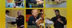 Imatge de Cunit acull el curs internacional d'arts macials del Budokan Kasa 5