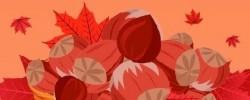 Imatge de Vine a celebrar la Castanyada i Halloween el dijous 31 3