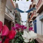 S'instal·len noves jardineres al centre del municipi