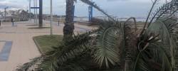 Imatge de Avís: Precaució pel fort temporal 5