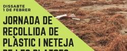 Imatge de Jornada de recollida de plàstics a la platja 6