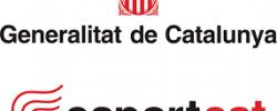 Imatge de La Generalitat de Catalunya anuncia mesures pel sector esportiu 4