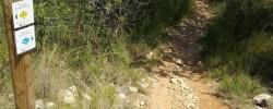 Imatge de Es posa a punt la senyalització de les rutes rurals de Cunit 2