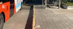 Imatge de La vaga de conductors d'autobus no afectarà al servei urbà de Cunit 8