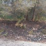Read more about the article S'investiguen 8 incendis en la nit de Cap d'Any a Cunit