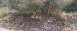 Imatge de S'investiguen 8 incendis en la nit de Cap d'Any a Cunit 7