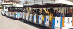 Imatge de La Residència l'Alzina de Cunit organitza una sortida en trenet després d'un any sense sortir 3