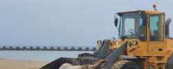Imatge de S'aconsegueix treure l'exemplar boví del mar 8