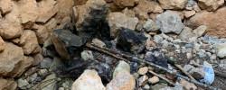 Imatge de Apareix malmesa la Barraca de Pedra Seca que s'està reconstruint 5