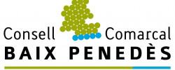 Imatge de El Consell Comarcal del Baix Penedès publica la convocatòria per demanar els ajuts individuals de menjador pel curs 2021-2022 7