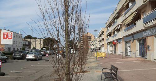 arbres plantats av bcn